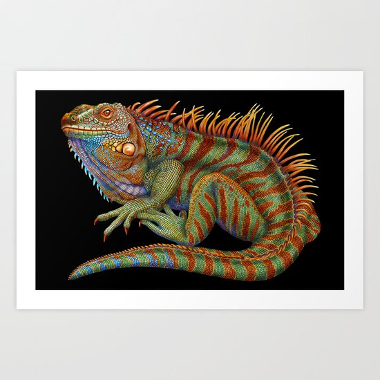 Iguana 2 Art Print