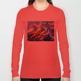Koi Krazy Long Sleeve T-shirt