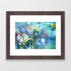 Rainbow Moss Drops Framed Art Print