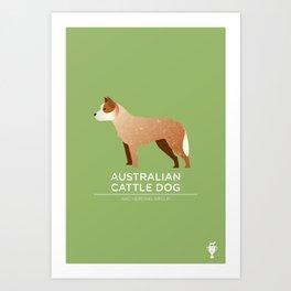 Australian Cattle Dog Art Print