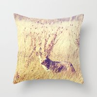 coyote Throw Pillows featuring Coyote  by Shelby Babbert Photography