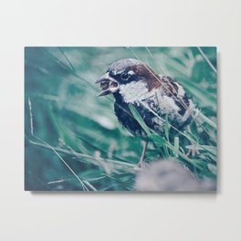 Sparrow In The Grass Metal Print