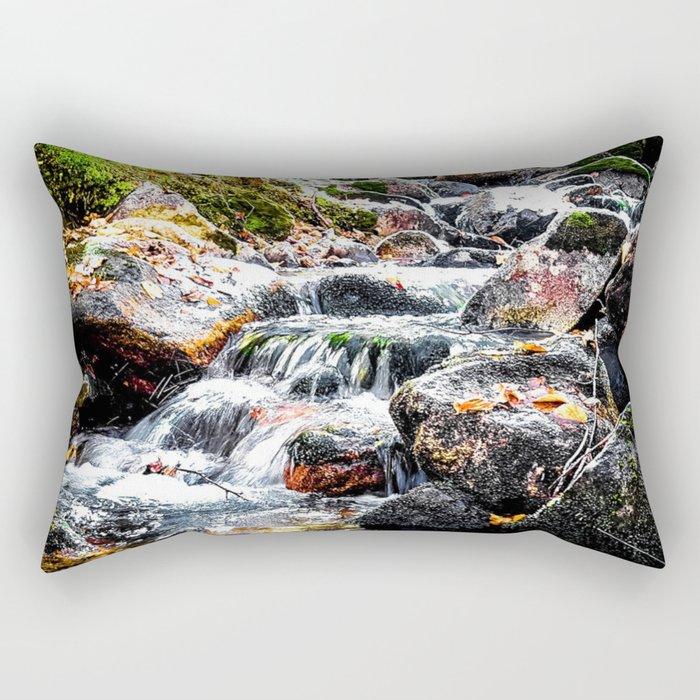 Autumn Falls Rectangular Pillow