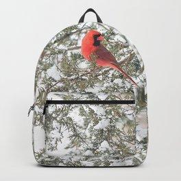 Cardinal on a Snowy Cedar Branch (sq) Backpack