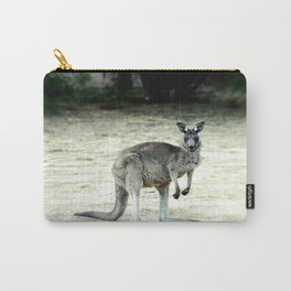 Big Grey Carry-All Pouch