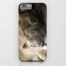 Cat nap II iPhone 6 Slim Case