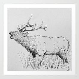 Bugle Art Print