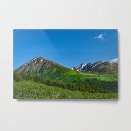 Alaskan Summer Greens - 1 Metal Print