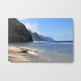 Napali Coast and Seal Metal Print