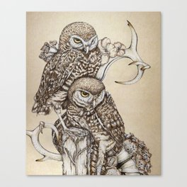 Duality - Two Burrowing Owls Canvas Print