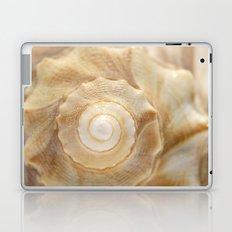 Lightning Whelk Seashell Laptop & iPad Skin