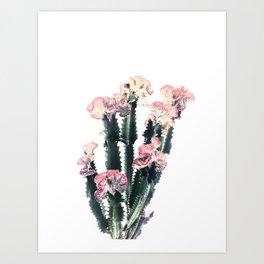 Lovely Cactus Art Print