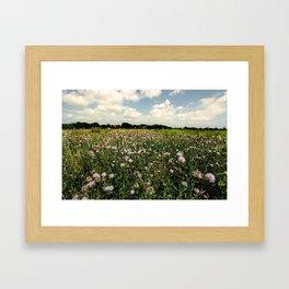 Asylum Lake Fields Framed Art Print