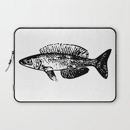 Cyprichromis cichlid Laptop Sleeve