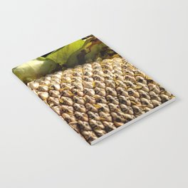 Sunflower Seeds Notebook