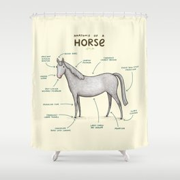 Anatomy of a Horse Shower Curtain