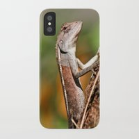 lizard iPhone & iPod Cases featuring lizard by Anja Ergler