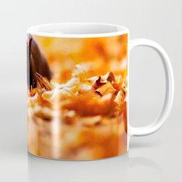 Autumn cat Coffee Mug