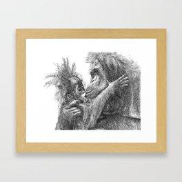 Orang Utan Framed Art Print