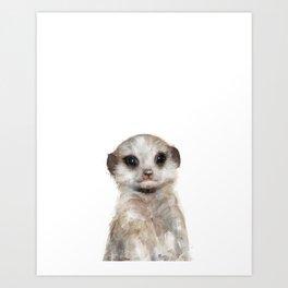 Little Meerkat Art Print