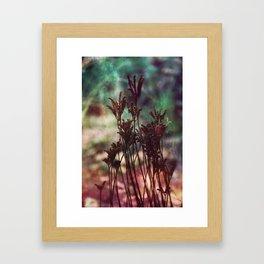Autumn plants #artistic #photography Framed Art Print