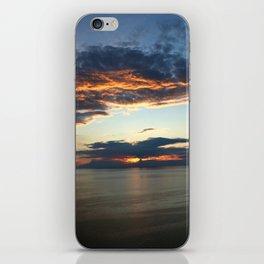 Sleeping Bear iPhone Skin