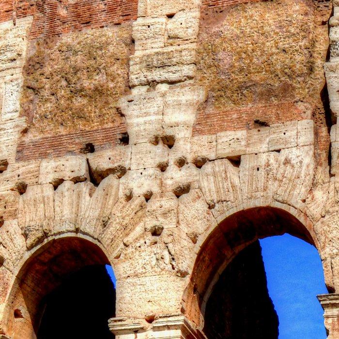 Colosseum Leggings
