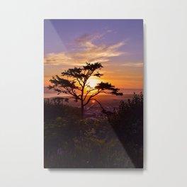 Kalaloch Beach Sunset Metal Print