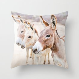 Three Donkeys in Baja, Mexico Throw Pillow