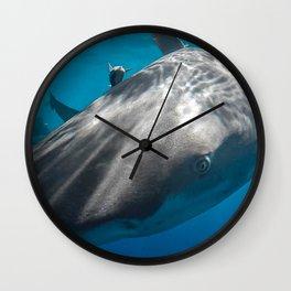 Lemon Shark Close-up Wall Clock