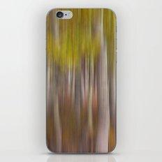 Aspen Dreams iPhone & iPod Skin