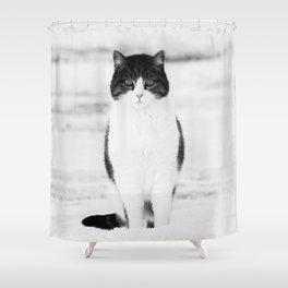 Cat Shower Curtain