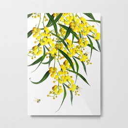 The Golden Wattle Vol.2  Metal Print