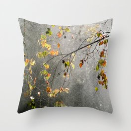 Silver Birch 4 Throw Pillow