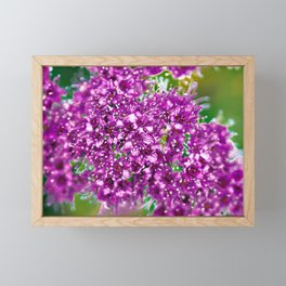 Major Key Framed Mini Art Print
