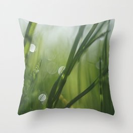 The texture of early morning Throw Pillow
