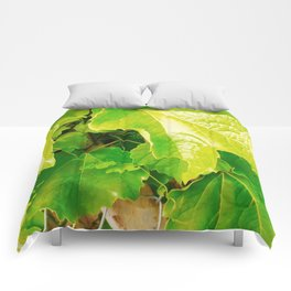 Grape Love Photography Comforters