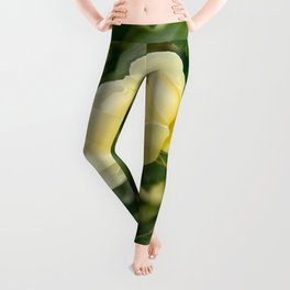 City of York Rose Leggings
