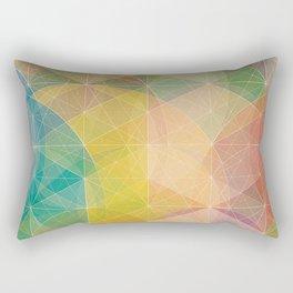 Color Pattern Rectangular Pillow