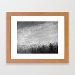 Tall Grass by the Sea Framed Art Print