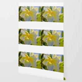 Modern Tropical Garden3 Wallpaper