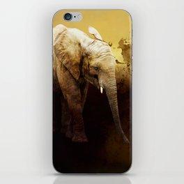 The cute elephant calf iPhone Skin