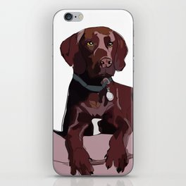 Chocolate Labrador iPhone Skin