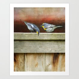 Two Warblers on The Fence Art Print