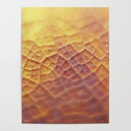 Macrotopia vegetal Poster