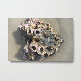 Magical Ocean Find Metal Print