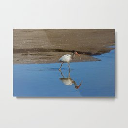 Off the Beaten Track Metal Print