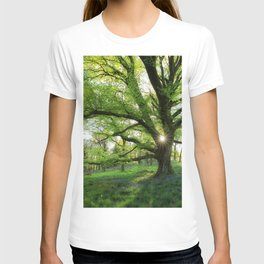 To Swing On The Tree Of Hope T-shirt