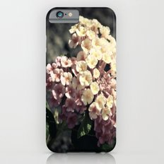 A Simple Gift iPhone 6s Slim Case