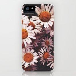 Camomiles iPhone Case